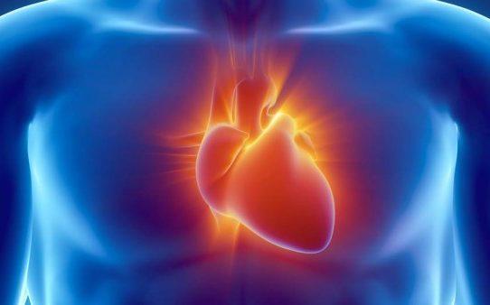 le Coeur acteur