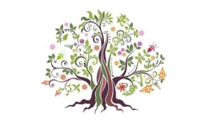 arbre-racines